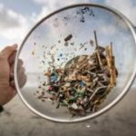 Microplastics: Seeking the 'plastic score' of the food on our plates