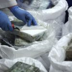Portugal seizes cocaine worth $33M hidden in banana shipment from Latin America