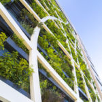 5 Ways to Make Your Startup Eco-Friendly